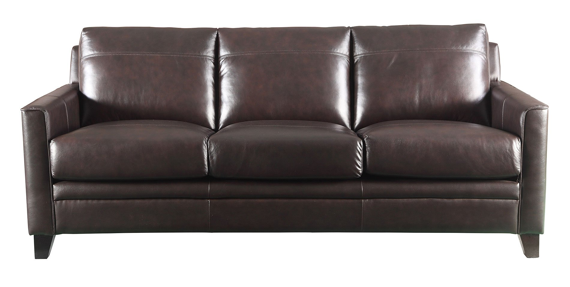 Fletcher Leather Sofa (Brown) by Leather Italia | FurniturePick