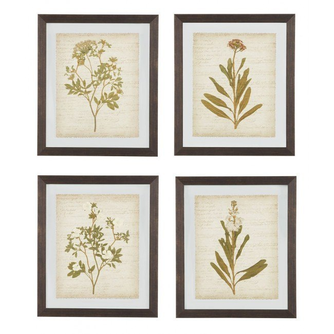 Dyani Wall Art (Set of 4)